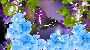 flowers spring leaves flower blue shine purple lavender aroma