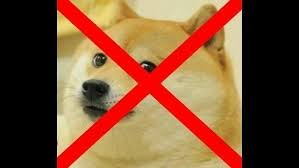 Doge Meme Pictures - petition doge meme must die help put an end to the doge meme once