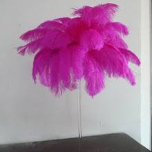 Ostrich Feather Centerpieces Wholesale by Ostrich Feathers Centerpieces Wholesale Online Shopping The World