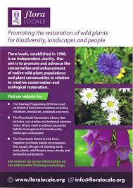 irish native plants flora and fauna archives east keswick wildlife trust