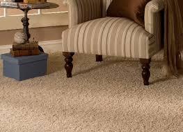 Carpet In A Living Room Carpets Pinterest Carpets Best Carpet For - Family room carpet