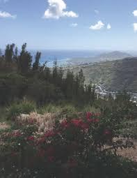 the hawaii loa ridge trail a secret hike on oahu hawaii real