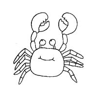 ocean animals coloring pages regarding cozy cool coloring pages
