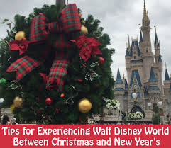 tips for experiencing walt disney world between new year s