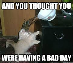 Having A Bad Day Meme - and you thought you were having a bad day misc quickmeme