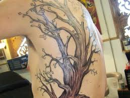 collection of 25 skeleton tree on side rib