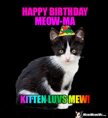 Birthday Animal Meme - happy birthday mom funny party animals wish mommy mother momma