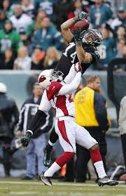 697 best i bleed green images on fly eagles fly