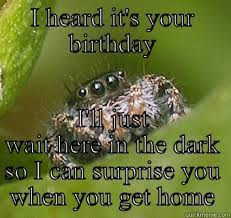 Spider Meme Misunderstood Spider Meme - misunderstood spider memes quickmeme