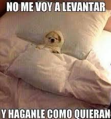 Memes De Me Vale - me vale madre meme by 12 memo 90 memedroid
