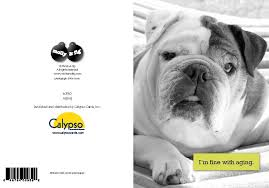 bulldog greeting cards levin photography