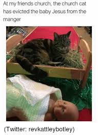 Jesus Cat Meme - at my friends church the church cat has evicted the baby jesus