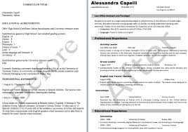 Resume Personal Statement Example by Personal Statement Examples For Resume Resume For Your Job