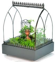amazon com h potter terrarium wardian case glass succulent plant