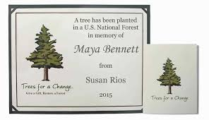 Personalized In Memory Of Gifts Sympathy Message Ideas Condolence Quotes Sympathy Card Ideas
