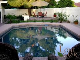 oasis landscaping around pool with pad for patio furniture in