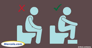 How To Make Yourself Go To The Bathroom When Constipated Want Better Bowel Movements Squat Don U0027t Sit