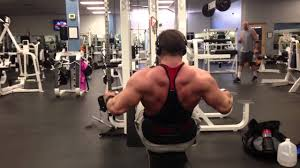 ultimate guide to reach your rear delt genetic potential fit