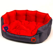 Kong Dog Beds Bedroom Archaicfair Avoid Bad Things For Dogs While Sleep