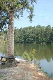 Mississippi nature activities images Punkin park campground the mississippi river jpg