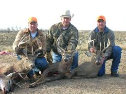 colorado semi guided elk hunts kansas whitetail guided hog hunts texas tx duck guides archery