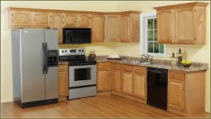 Ebay Kitchen Cabinets Redecor Your Interior Design Home With Fabulous Modern Ebay