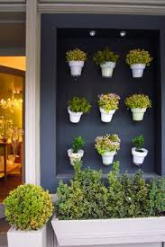 herbs herb garden indoor garden plants decor decoration