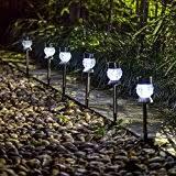 Solar Landscape Lights Amazon Com Solar Landscape Lighting Outdoor Lighting Tools