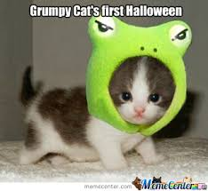 Halloween Cat Meme - grumpy cat still hates halloween by austindornbush meme center