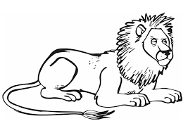 coloring page lion coloring page lion img 12841