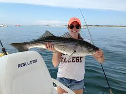 cape cod fishing report black eel outfitters