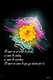 imagenes de amor para mi pc gratis fondos para el celular o tablet con palabras de amor