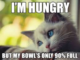 Depressed Cat Meme - 10 hilariously heartbreaking first world cat problems that we