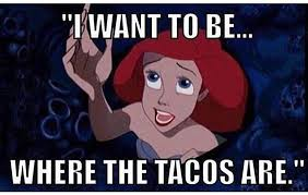 Taco Memes - mondo taco on twitter ariel knows what s up tacos memes