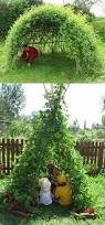 amazing living structures you can make willow dome living fence