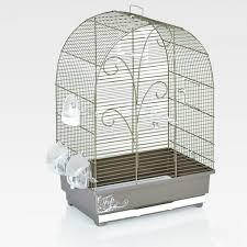 uccelli in gabbia gabbia per uccelli