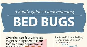 remedies for bed bug bites home remedies for bed bug bites hrfnd