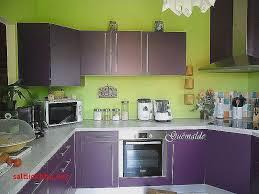 meuble de cuisine aubergine bas meuble cuisine pour idees de deco de cuisine élégant cuisine