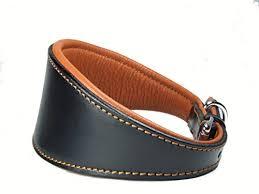 afghan hound collars uk plain padded comfy real leather dog collar suitable for saluki