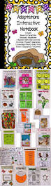 adaptations interactive notebook animals and plants behavioral