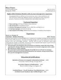 Photography Skills Resume Sample Resume Photo Sample It Director Resume Sample Resume For