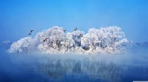 most beautiful winter 4k hd desktop wallpaper for 4k ultra hd