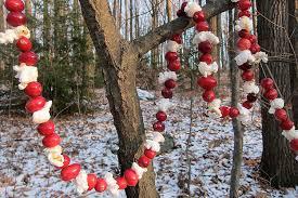 bird feeder cranberry garland project
