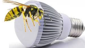 porch lights that don t attract bugs are bugs insects attracted to led lights youtube