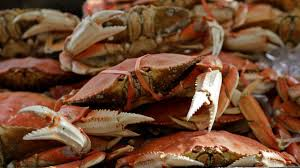 police fight over crab legs turns violent in connecticut 2