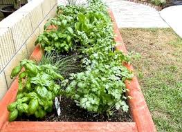 Magickalideas Com by Vegetable Garden Clay Soil Magickalideascom Dunneiv