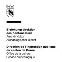Schnidejoch und Lötschenpass Band 2  ADB Archäologischer Dienst