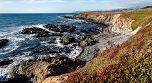 Moonstone Cottages By The Sea Cambria Ca by Best Price On Moonstone Cottages In Cambria Ca Reviews