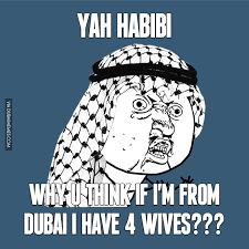 Why U Meme - why u think if i m from dubai i have 4 wives image dubai memes