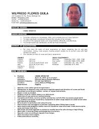 resume format 2013 sle philippines short basic services for all in an urbanizing world gold iii book